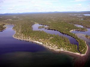 Blivande nationalpark? Foto: Håkan Degselius