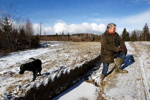 Djupa spår efter avverkningsmaskiner i Fred Bäckströms hagmark vid Gäle gård, Viskan. Själv visste han ingenting. Han blev inte ens kontaktad av Callans Trä AB som skötte avverkningen. Hundpromenaden med labradoren Wilma är inte samma avkoppling som tidigare.