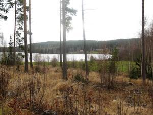 Sjön Liljan – ett tänkt centrum i Dalecarlia City