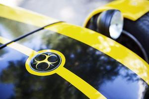 Bilen har en egen logotyp som hämtat inspiration från symbolen för smittförande ämne.