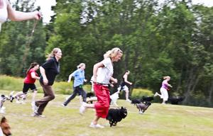Här visar Gerard O´Shea genom en gemensam löpning över gräsmattan, hur viktigt det är att hundarna får roa sig.
