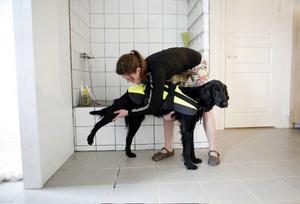Här hjälper Frida Lundin hunden Qila att stretcha.