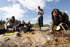 Jennifer Strömbom, Julia Hellgren, Emma Krüger och Karla Flamenco-Rojas från Vasaskolan letar stenåldersfynd, övervakade av Martin Broberg.