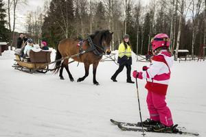 Många skidåkare stannade för att se Karin Frenells islandshäst Kelli dra jultomtens släde vid Sidsjöbacken. Risslan som Kelli drar ägs av Sidsjö-bon Sven Jonsson.