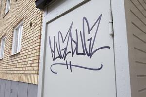 Antalet polisanmälningar om klotter i Ljusdals kommun ökade från 19 till 58 förra året. Det är nästan tre gånger så många anmälningar som snittet sedan år 2007.