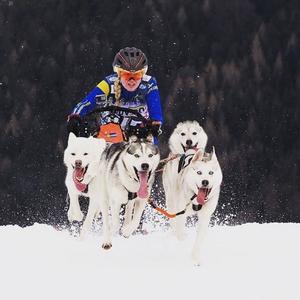 Maja Antoniusson med sitt hundspann.